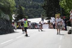 Alpe-dHuzez-187-Verkeersregelaar