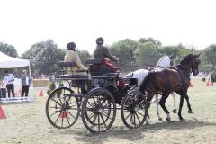Nederlands-Kampioenschap-Wagenmennen-004