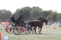 Nederlands-Kampioenschap-Wagenmennen-007