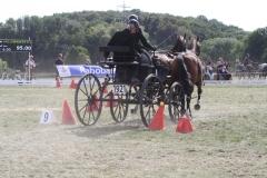 Nederlands-Kampioenschap-Wagenmennen-008