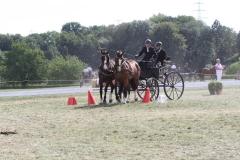 Nederlands-Kampioenschap-Wagenmennen-009
