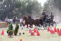 Nederlands-Kampioenschap-Wagenmennen-012