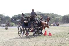 Nederlands-Kampioenschap-Wagenmennen-014