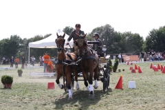 Nederlands-Kampioenschap-Wagenmennen-016