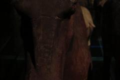 Maaseik-Tentoonstelling-Terracotta-Leger-30-Dieren