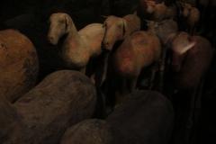 Maaseik-Tentoonstelling-Terracotta-Leger-34-Dieren