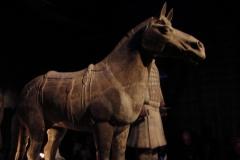 Maaseik-Tentoonstelling-Terracotta-Leger-70-Paard